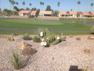 Photo for Sunbird (Pet Friendly) villa on golf course, Chandler AZ vacation rental