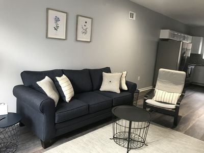 Living room. Sofa bed