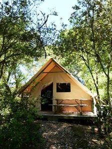 Photo for Camping des Pins **** - Amazone Treehouse 3 rooms 4 persons