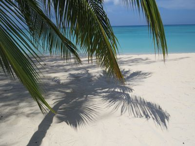 Sand, Sea and Palm Trees...Sun or Shade, you decide!