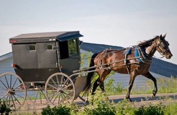 Amish Country B&B all rooms with private bath facilities