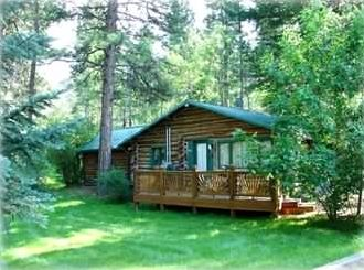 The cabin is in a beautiful setting among pines and cottonwoods.