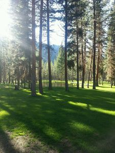 Photo for Brand new, secluded family-friendly get away with direct access to public lands