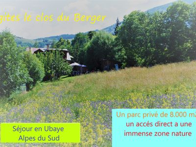 Photo for Chamois ** agréement prefectural 04-073-0252