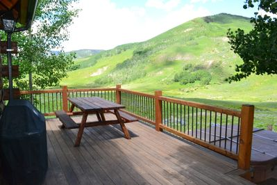 Back yard deck with large picnic table and Weber Grill.