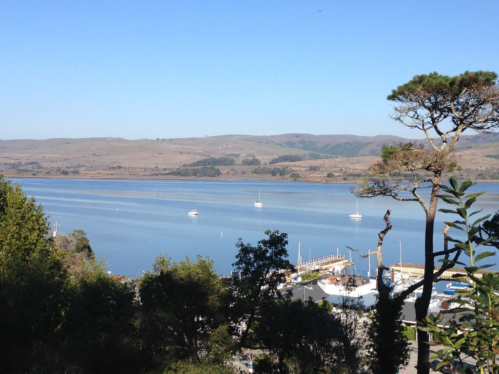 Inverness vacation retreat tomales bay view inverness for Vacation rentals san francisco bay area