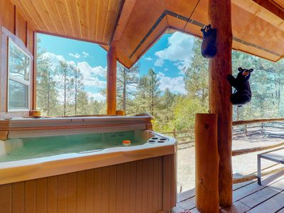 Photo for Gorgeous cabin w/ hot tub & porch -backs up to National Forest & Martinez Canyon