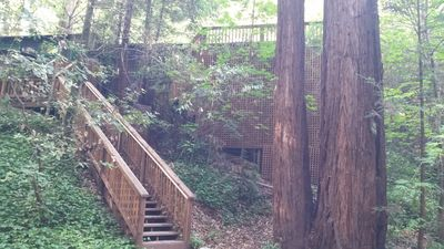 Photo for 1BR Cabin Vacation Rental in Guerneville, California