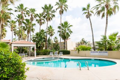 Relax under the palms by the sparkling pool & hot tub, this is view from patio