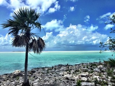 Photo for Bonefish Bungalow is the perfect haven for eager fishing enthusiasts