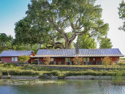 "Photo for ""Bianchi Winery's Enchanting Ranch Style Vineyard home"""