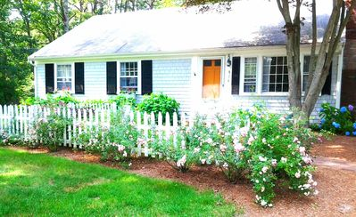 Photo for pets o.k OLD CAPE COD