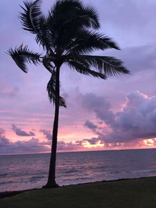 Photo for 2BR Apartment Vacation Rental in Hauula, Hawaii