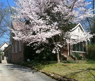 A Touch of Paris  - Gorgeous 3BR  JUST RENOVATED Cottage in Heart of Atlanta