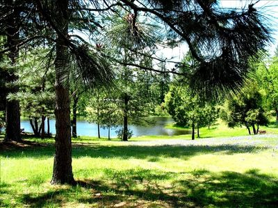 Photo for Cozy & Private Cabin on 5.5 Acres-Pond, Amongst Pines & Oaks