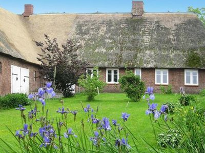 Photo for Holiday homes Wellness unter Reet, Dagebüll  in Wattenmeer - 4 persons, 2 bedrooms