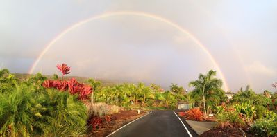 Photo for Executive Home above Kealakekua bay in safe, quiet gated community
