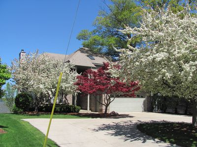 Spring has sprung! Flowering trees in full bloom. Welcome to Lake Escape!