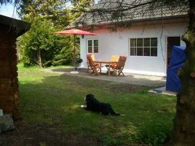 Photo for Obj. 79 - Peaceful cottage for 6 people with dog - Obj. 79 - Peaceful cottage for 6 pers. with dog, wireless