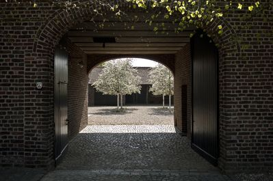 View into the courtyard during apple blooming period