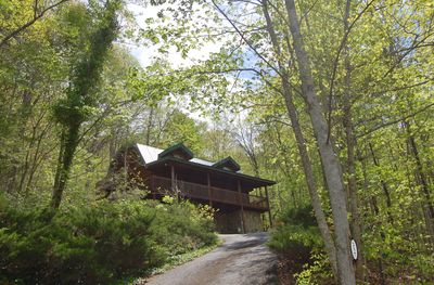 Drive Up Into this Dreamy Wooded Getaway