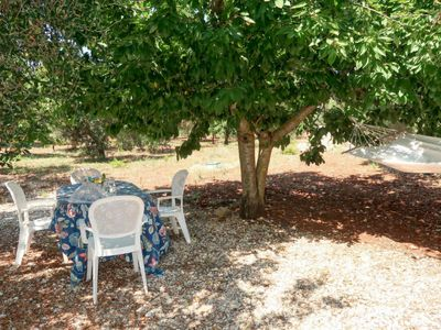 Photo for Vacation home Trullo Alloro (MFR100) in Martina Franca - 3 persons, 2 bedrooms