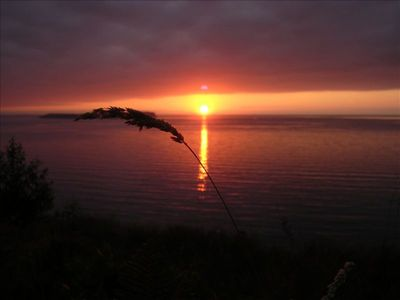 Photo for Fabulous Get-Away - Minutes from Scenic  Port Townsend