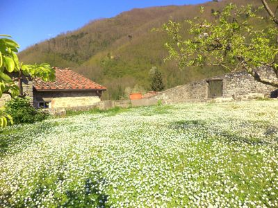 Photo for Old mill in Tuscan countryside with pool and views just 30 minutes from Lucca