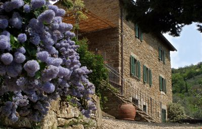 CHARMING VILLA near Cortona with Pool & Wifi. **Up to $-1092 USD off - limited time** We respond 24/7