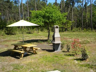 Photo for Facing the forest Apartment 30 m² - 4 people- WIFI / BARBECUE- STE EULALIE EN BORN
