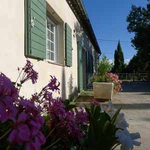 Photo for Beautiful cottage 230 m2, ponies, pool village, 15 minutes from Carcassonne