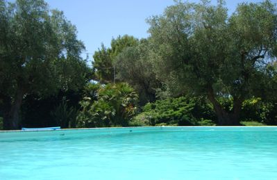 Photo for Villarori at the gates of Lecce - House with swimming pool in a villa with centuries-old olive trees