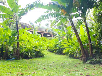 Photo for Villa in the middle of nature