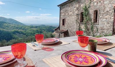 Photo for Liguria Relax among the olive trees