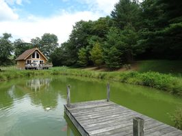 Photo for 1BR Cottage Vacation Rental in Willis, Virginia