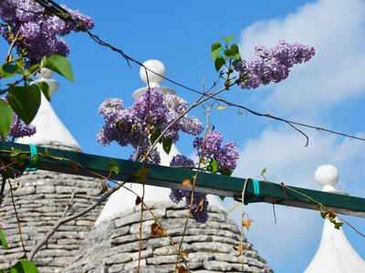 Photo for I TRULLI IN VALLE D'ITRIA
