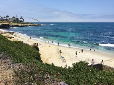 Come and enjoy La Jolla! (5 min drive from apartment to this beach)