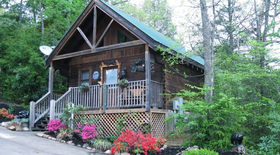 mountain memories true log cabin pas pet friendly