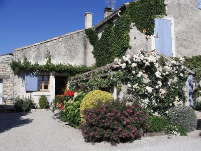 Photo for Tranquility in the middle of vineyards in the heart of Provence