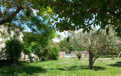 Photo for Part of a typical Provencal farmhouse large garden in the heart of St Rem