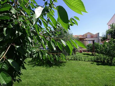 Photo for Vacation home Vila Sara in Zadar - 7 persons, 3 bedrooms