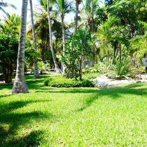 Photo for Just 150 steps to Grace Bay  Beach & 5 min to shopping & dining!