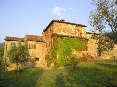 Classic stone farmhouse with olive trees