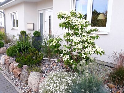 Photo for Holiday home oasis Karlshagen (Usedom) for 4 persons