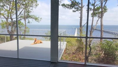 Photo for New construction, elevator, Bayfront, pool, dock, outdoor pizza oven