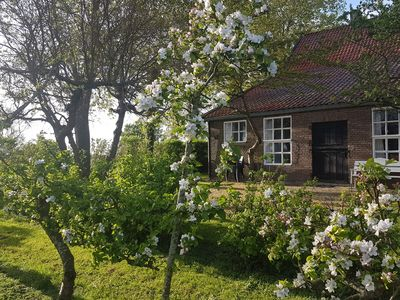 Photo for Beautiful rurally located, renovated farmhouse in Veere for 6 people