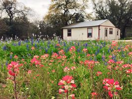 Photo for 2BR Guest House Vacation Rental in Poteet, Texas