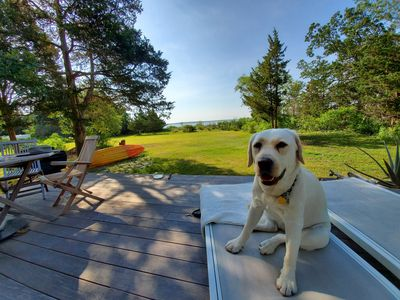 Photo for Stunning location  on 2 acre bayfront  in Jamesport