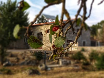 Photo for Rustic village house trasmontana