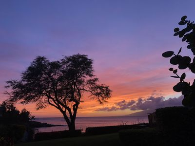 Photo for A-27 Napili Point Resort,  Rare Air-conditioned Secluded 1 Bedroom Condo